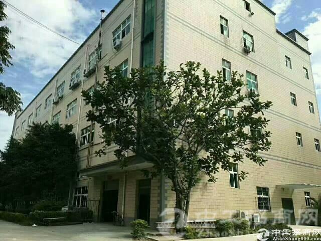 观澜花园式标准厂房二楼1400平出租,高速出口附近-图3