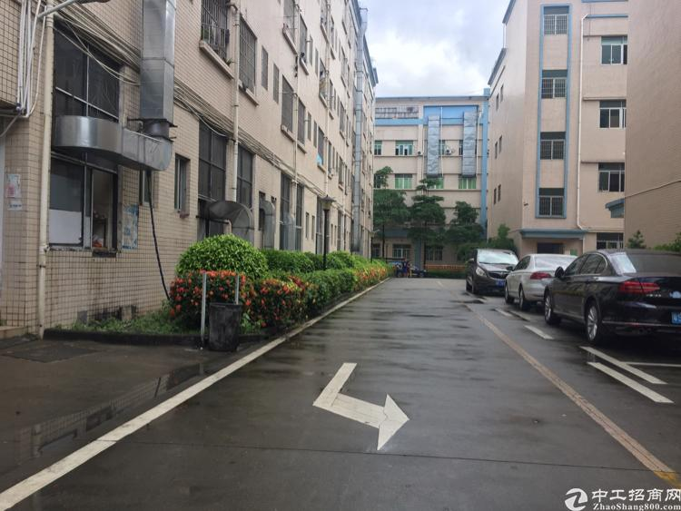 出租观澜大和花园式工业园4楼1200平米标准厂房-图6