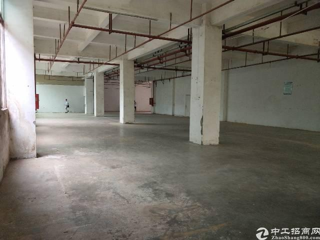 石岩应人石工业区新出930平厂房欢迎咨询