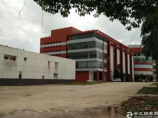 大朗镇高英村新出大型工业区68000平方米招租、可分租