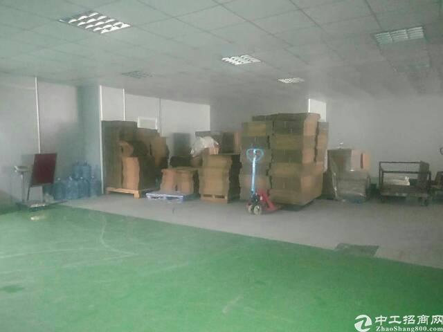 福永凤凰新出楼上分租340平厂房