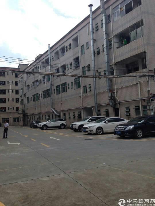 观澜福民可包租做公寓厂房11000平