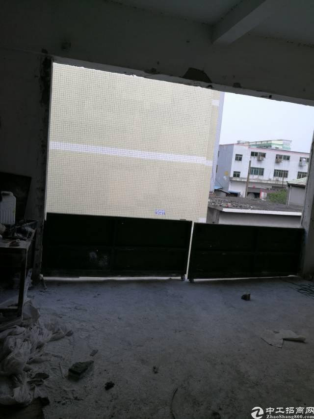 高埗新岀标准厂房二楼招租啦!!!-图2