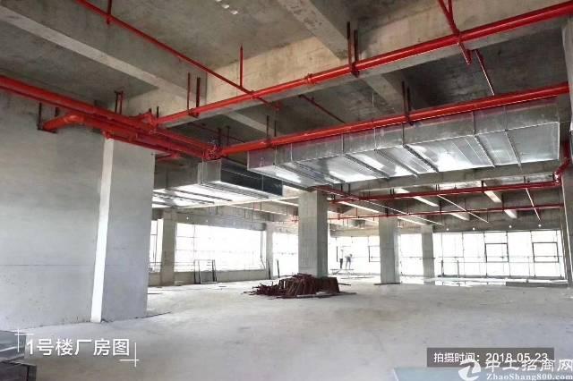 东莞市一手全新高新产业园区厂房出售