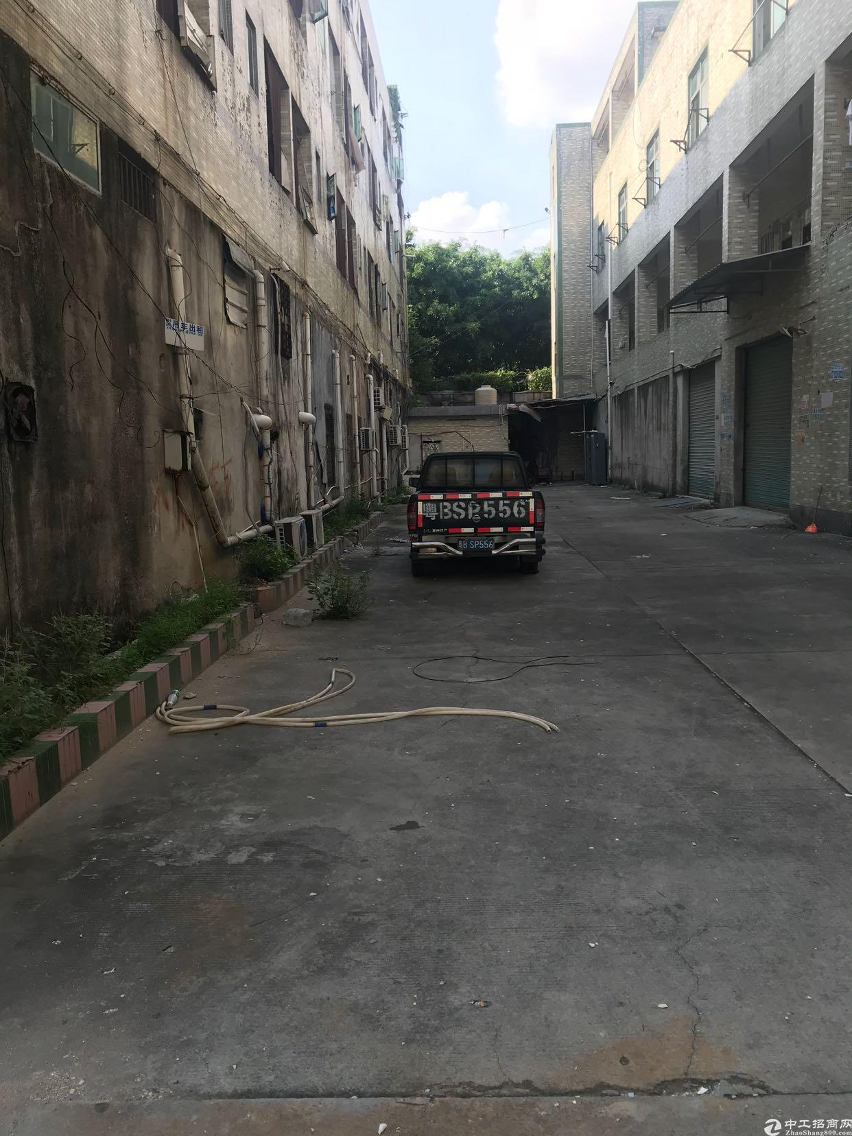 布吉早禾坑低价厂房招租-图2