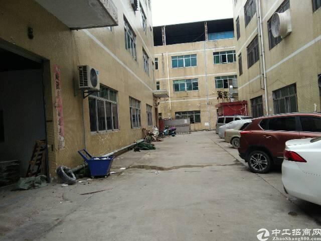 光明新区田寮一楼500平米带装修的厂房出租