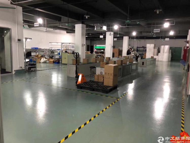 龙华原房东2200平厂房招租,可分租,停车位超足-图4