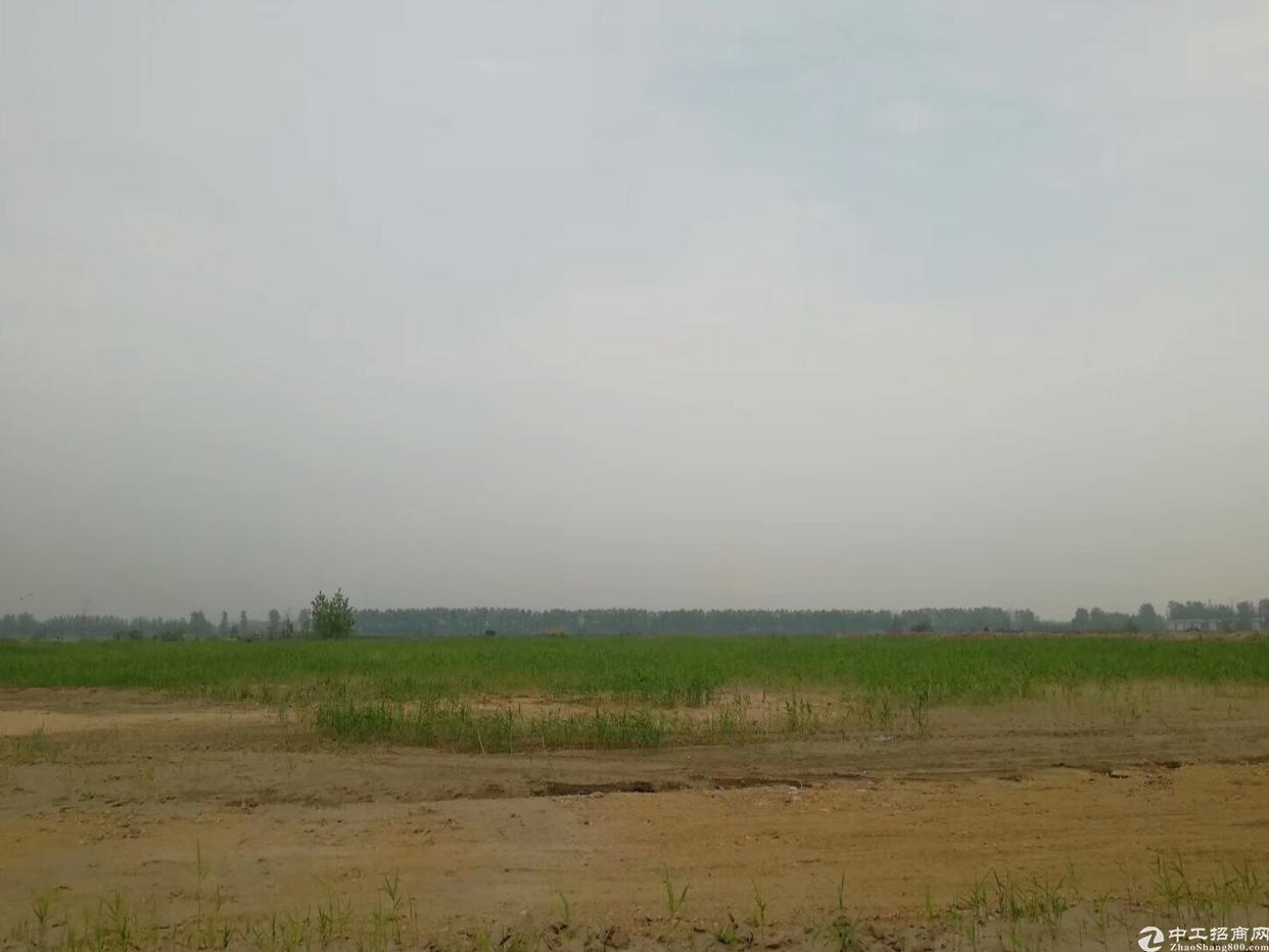 凤岗新出 可分租 空地 24000平 有水电 可搭建 可硬化