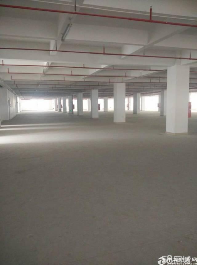 石岩镇物流园区厂房出租7000平方可分租