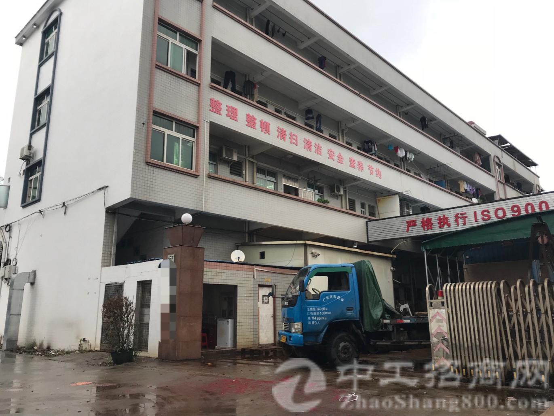 茶山镇占地2400㎡建筑3700㎡买地合同厂房地出售