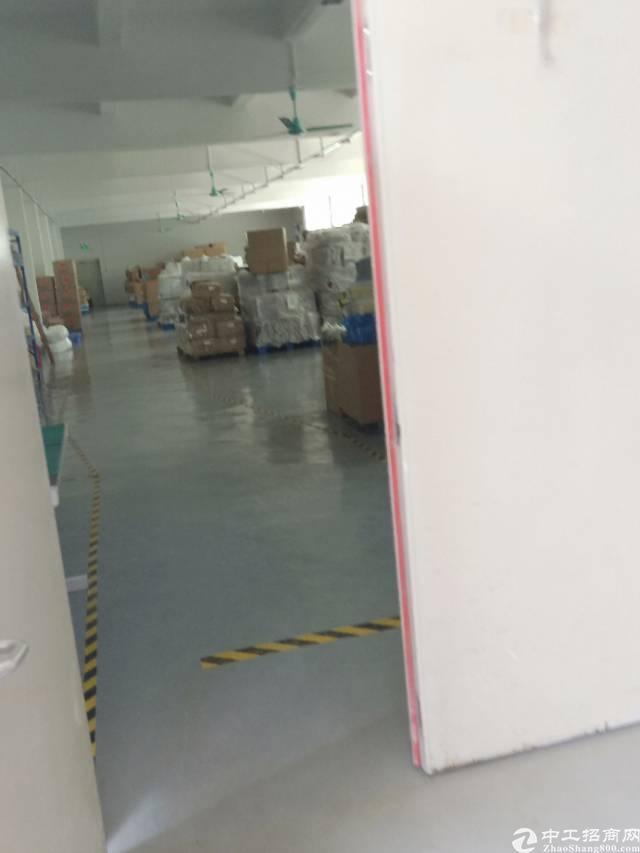 平湖华南城旁一楼250平方标准厂房出租-图4