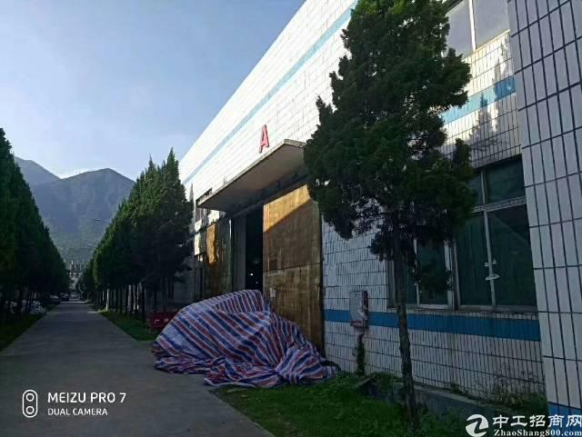 惠州新出独门独院钢构厂房招租