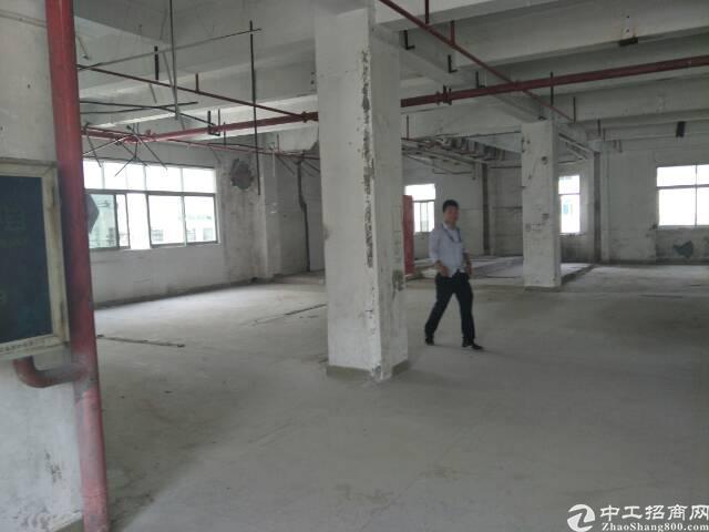 西乡鹤洲富源教育城附近一楼1000平方租金35元