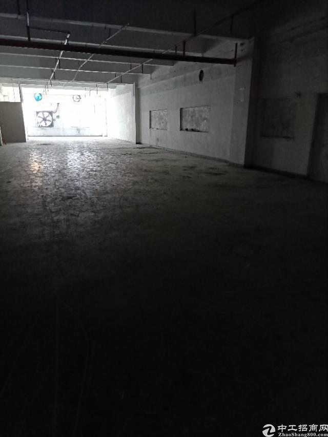 万江新出二楼厂房,工业园里,空地很大