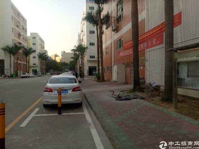 沙井大王山新出楼上厂房招租480平方