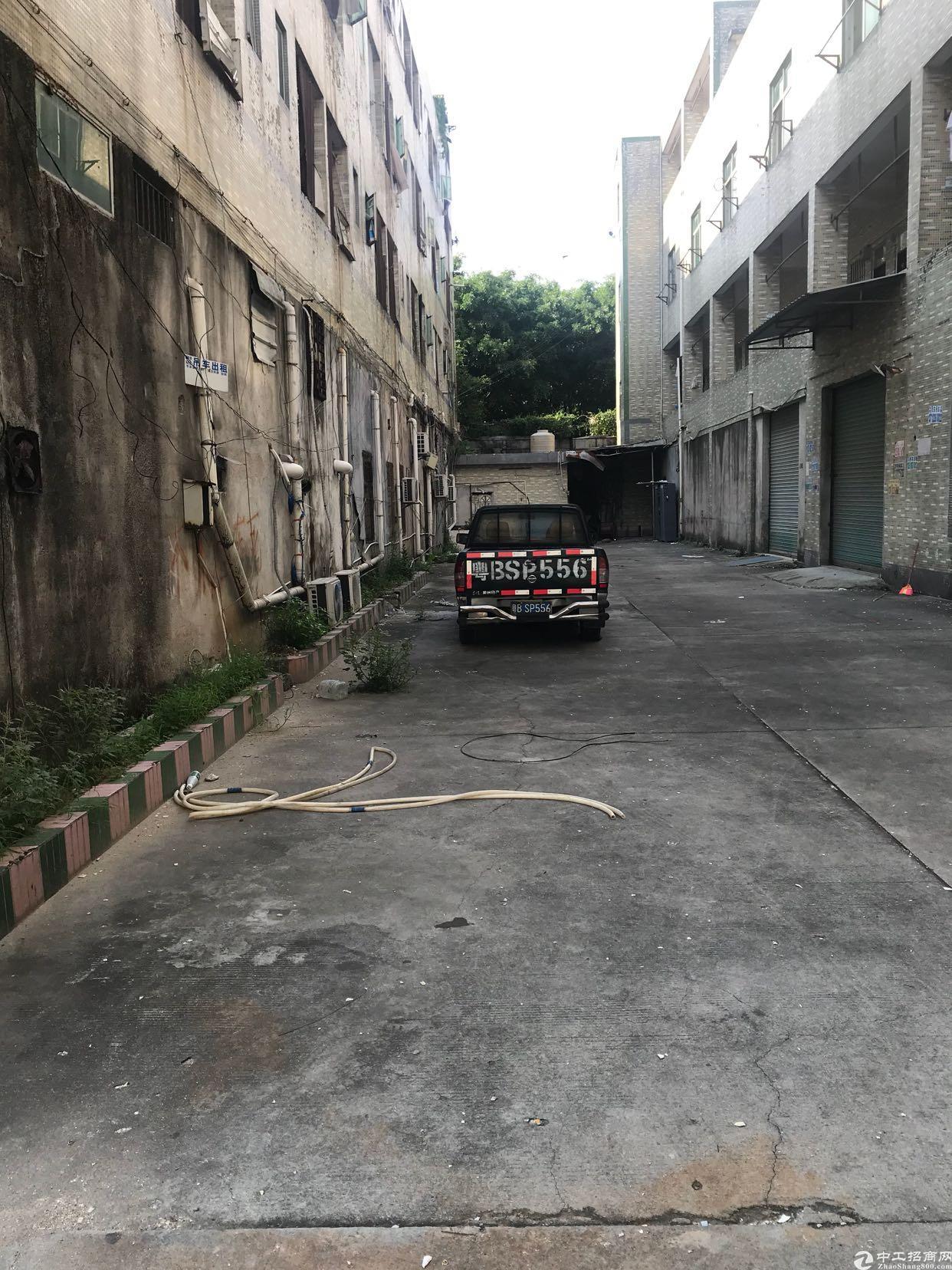 布吉早禾坑低价厂房招租-图5