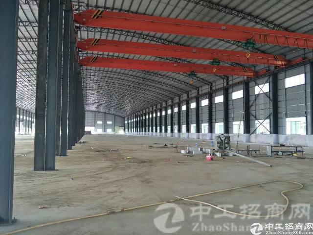 东部边上新出钢结构厂房6000平方带行车