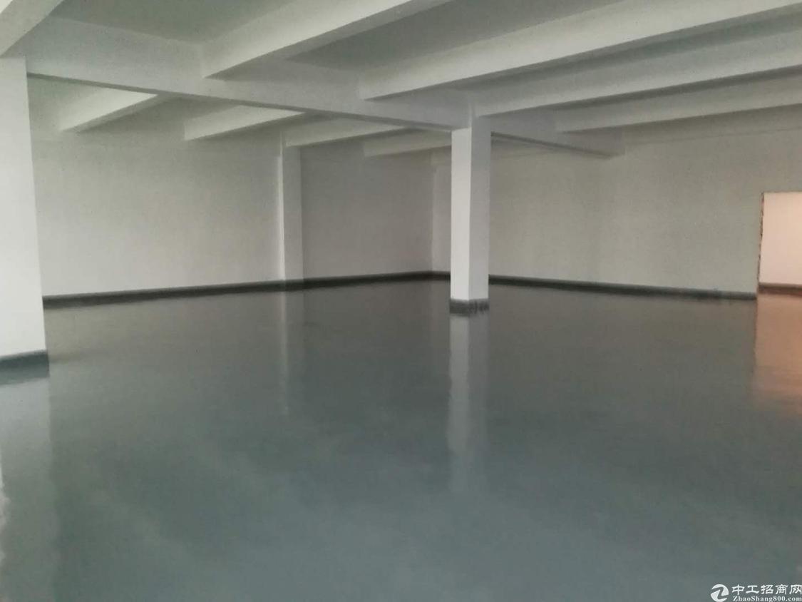 沙井宝安大道新出楼上2000平米写字楼出租