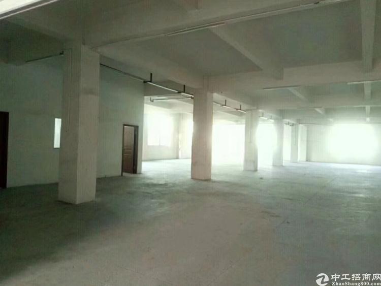 沙井形象最佳工业园1楼新出3000平米的厂房租出