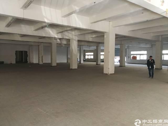 平湖新出带红本,已过消防工业区一楼400平米厂房招租-图4