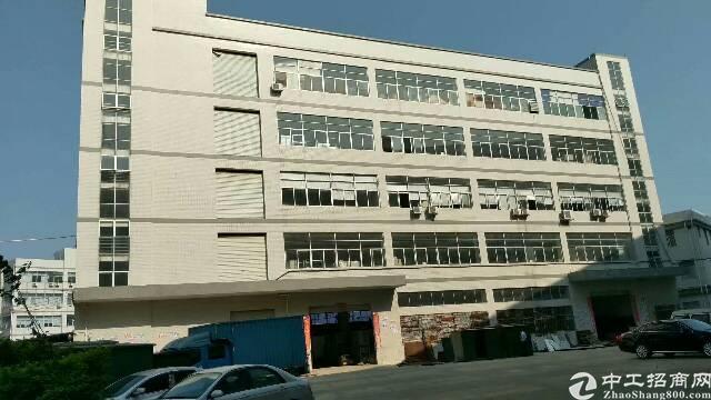 龙岗中心村楼上1250平精装修厂房出租可分租