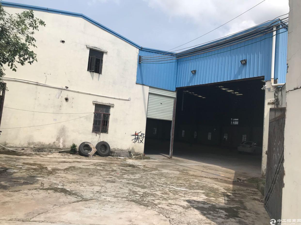 塘厦镇石鼓单一层钢构独院2300平方出租(低价处理)