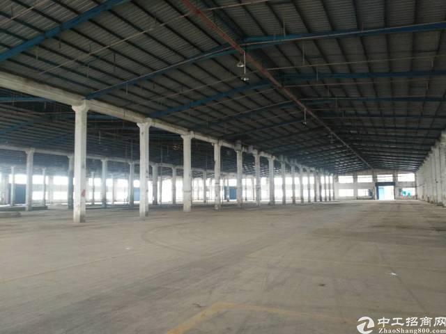 惠州新出独门独院钢构厂房招租滴水8米