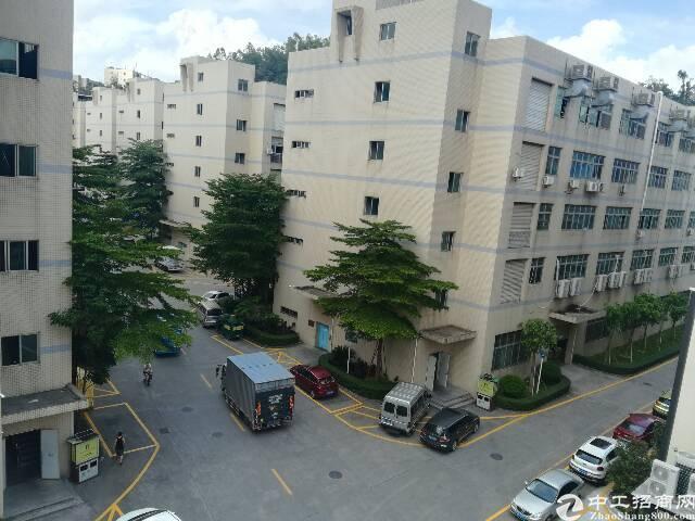 石岩红本原房东,带豪华装修楼上2200平方厂房出租