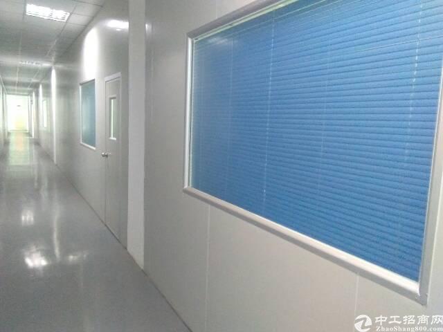 长安镇新出原房东厂房1-3楼5400平方,带豪华装修