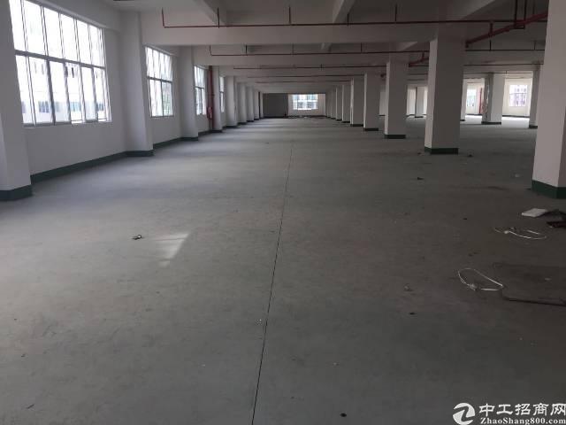 塘厦石马全新厂房,2楼3000带消防喷淋平大小可分,交通方便