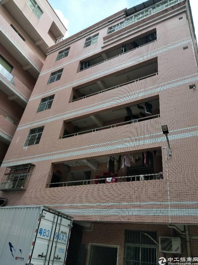龙岗爱联原房东农民房包租公寓3000平方出租