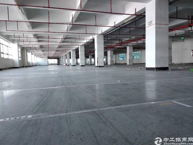 西丽镇科技园区厂房出租3000平方可分租