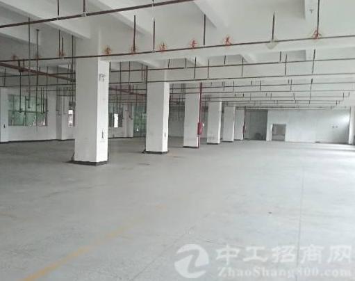 公明田寮南光高速口旁新出楼上红本厂房1330平方