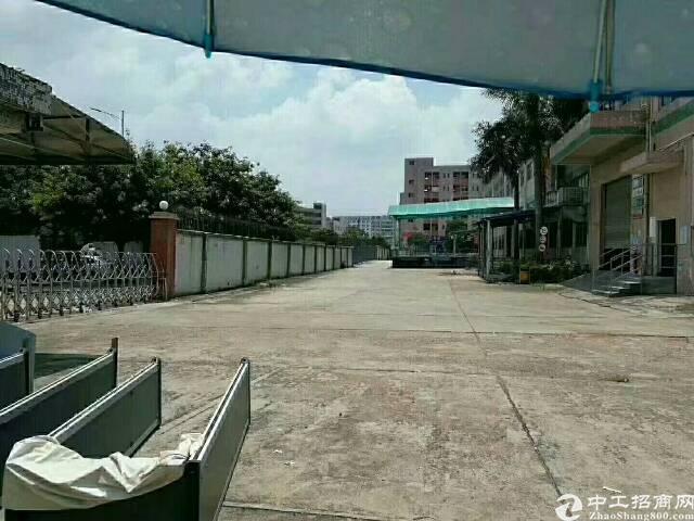 沙井大型工业区招租-图3