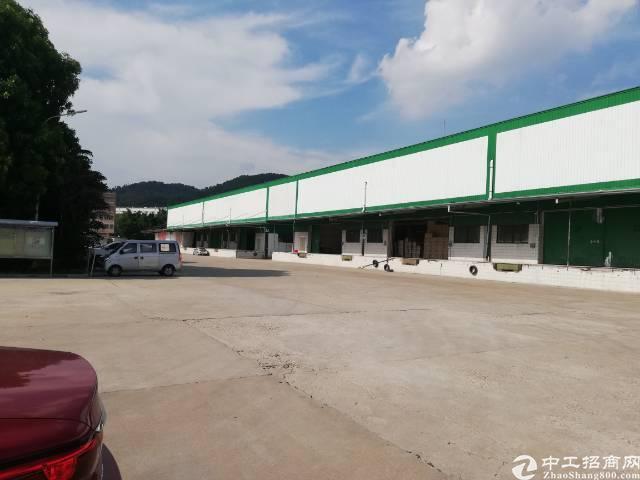 龙华民治高速出口新出物流仓300平米