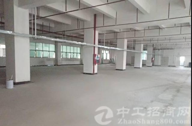 公明田寮南光高速口旁新出楼上红本厂房1330平方-图2