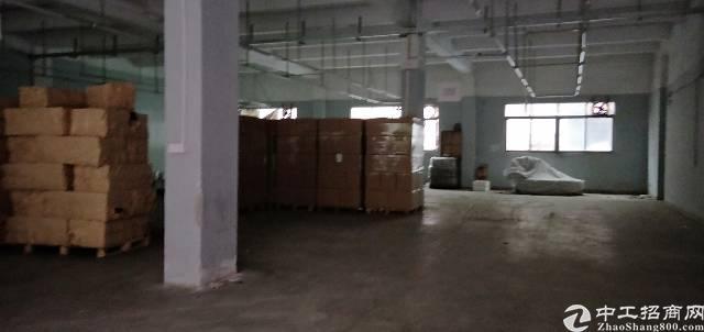 华南城附近一楼780平方带装修厂房出租-图2