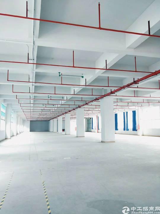 松岗燕川新出独院厂房35000平方米带装修有红本低价招租