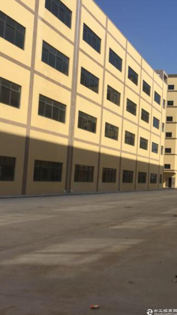 新建好独院1万平标准厂房
