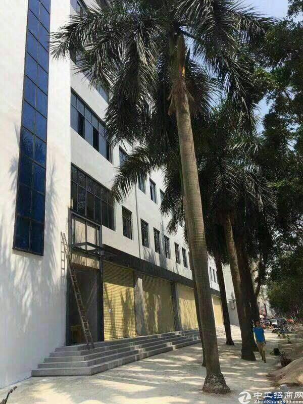 西乡银田工业区南科创 二楼现有2000平 不限行业