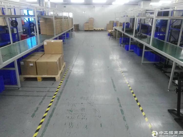 福永107国道旁、靠近凤凰山1000平米厂房、公摊小
