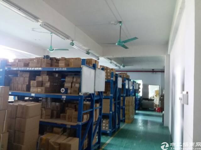 龙华大浪布龙路旁新出楼上400平米无公摊厂房