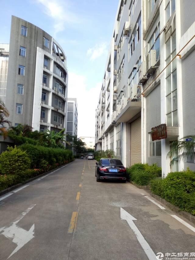 坪山区石井市场工业园分租二楼带装修厂房780平