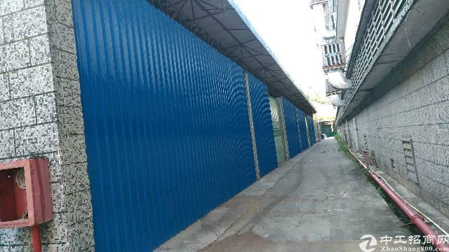 同乐新出独院铁皮厂房400平,滴水六米,中间无柱