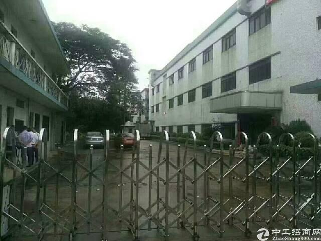 大王山独院厂房出租二楼半层800平
