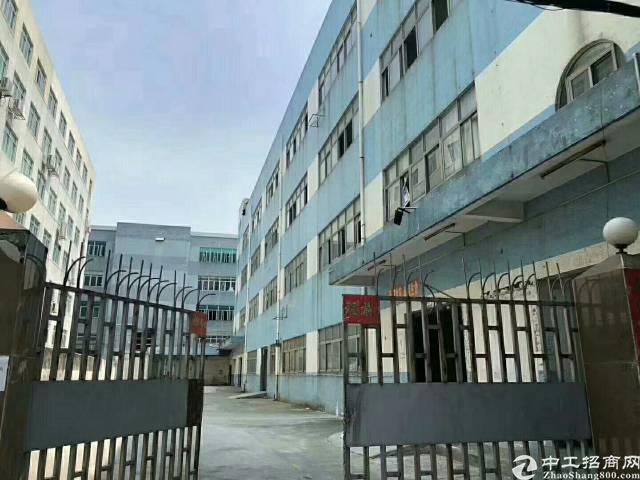 广州,新塘厂房明包,占地36亩,