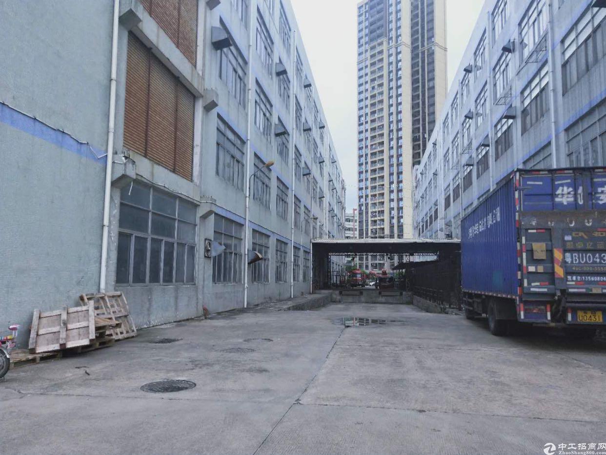 坂田红本独院厂房1-7栋20万平方大小分租低价出租