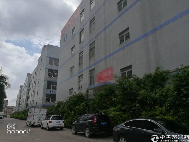 坂田12万平方独院带消防喷淋,卸货平台厂房招租
