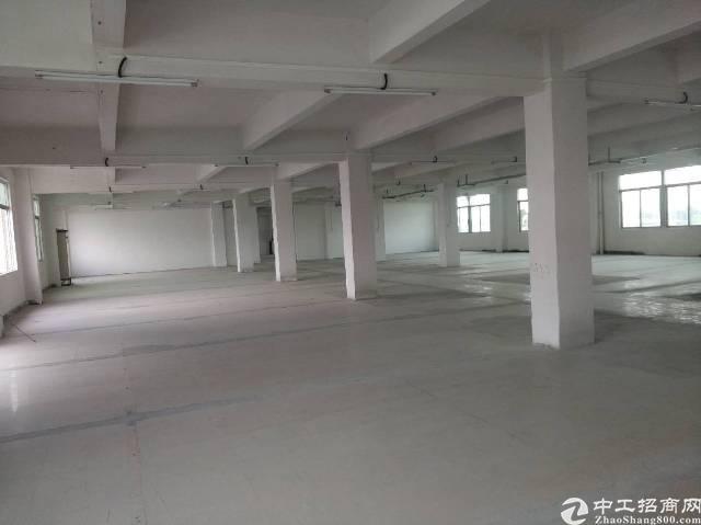 万江独门独院标准厂房2楼采光很好租12