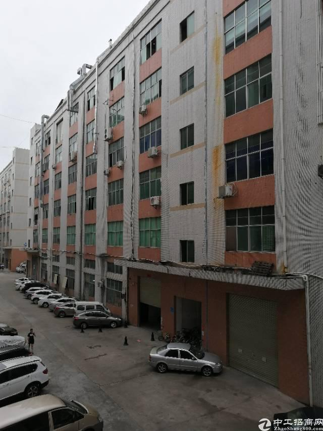 凤岗金凤凰新出六楼3000平米带装修办公室带仓库标准厂房